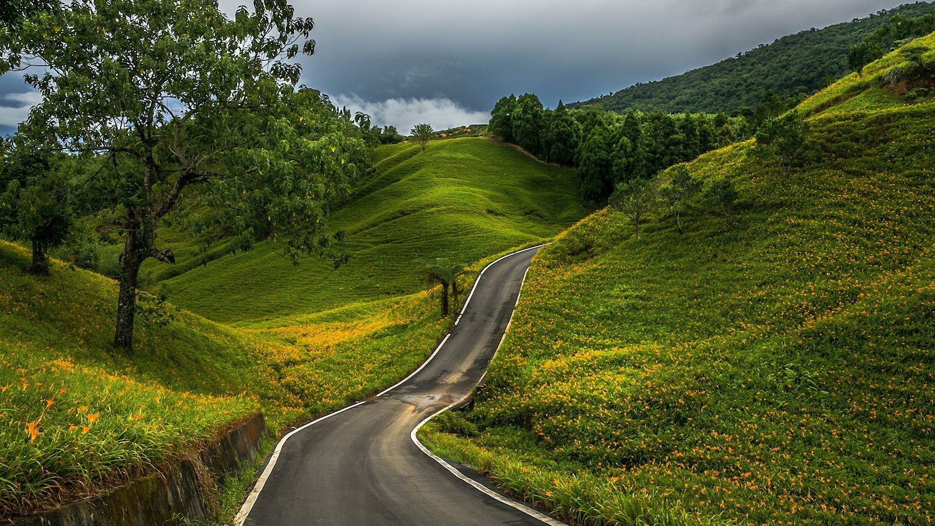 Road Through The Green Hills Nature Hd Wallpaper 1920x1080 3813 FOLKBRO